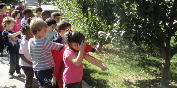 Col·legi Sagrat Cor Educació Infantil Primaria ESO VIC-22